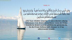 Nahl Suresi 14. ayet