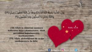 Nahl Suresi 18-19. ayet