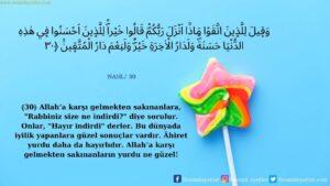 Nahl Suresi 30. ayet
