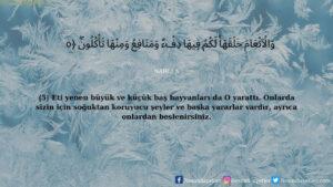 Nahl Suresi 5. ayet