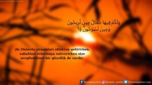 Nahl Suresi 6. ayet
