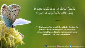 Nahl Suresi 7. ayet