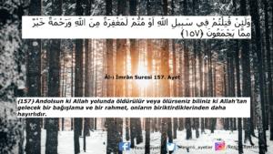 Âl-i İmrân Suresi 157. ayet