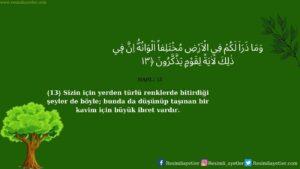Nahl Suresi 13. ayet