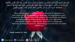 Yunus Suresi 24. ayet