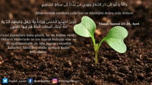 Yunus Suresi 25-26. ayet