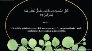 Nahl Suresi 3. ayet