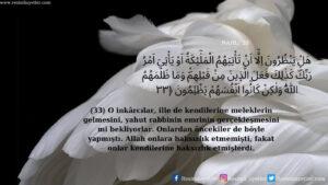 Nahl Suresi 33. ayet