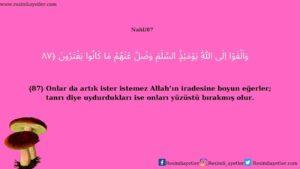 Nahl Suresi 87. Ayet