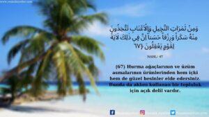Nahl Suresi 67. Ayet