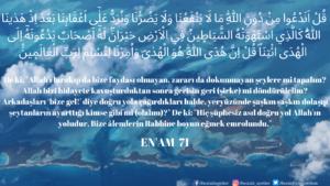 Enam Suresi 71. ayet