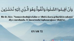 Enam Suresi 72. ayet