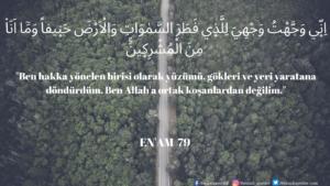 Enam Suresi 79. ayet