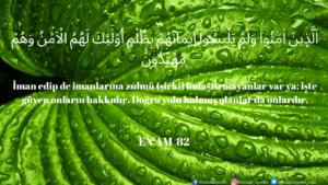 Enam Suresi 82. ayet